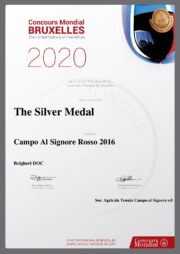 Councours Mondial Bruxelles 2020 - The United Nations of Fine Wine: The Silver Medal Campo al Signore Rosso 2016 - The Silver Medal